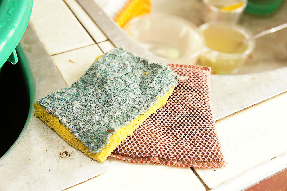 Dirty kitchen sponge